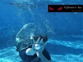 Underwater Photography Gallery